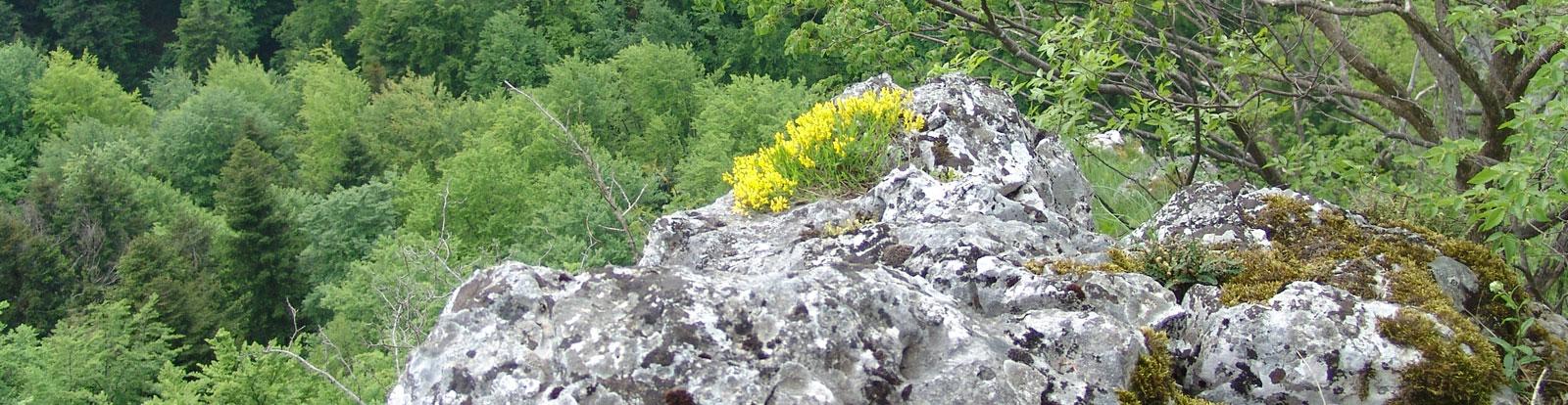nacionalni-park-kozara-geologija-5
