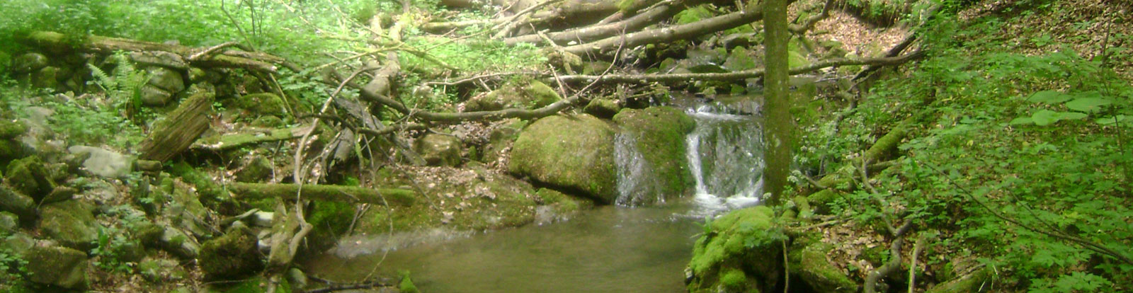nacionalni-park-kozara-geologija-1