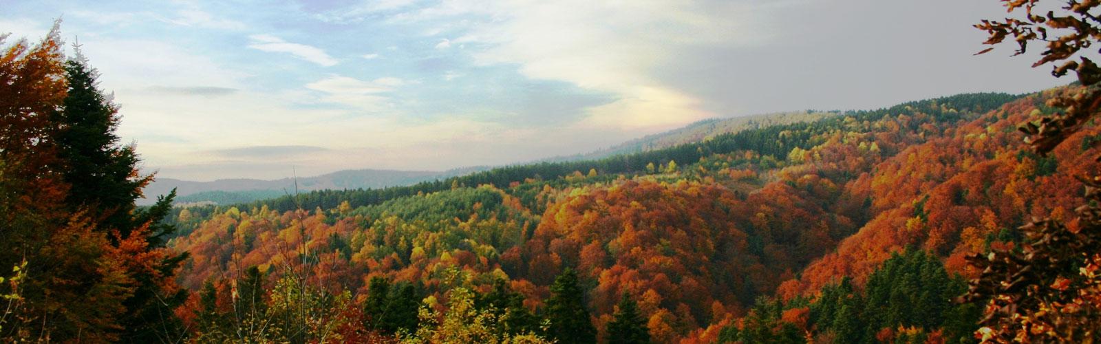 nacionalni-park-kozara-klima-2