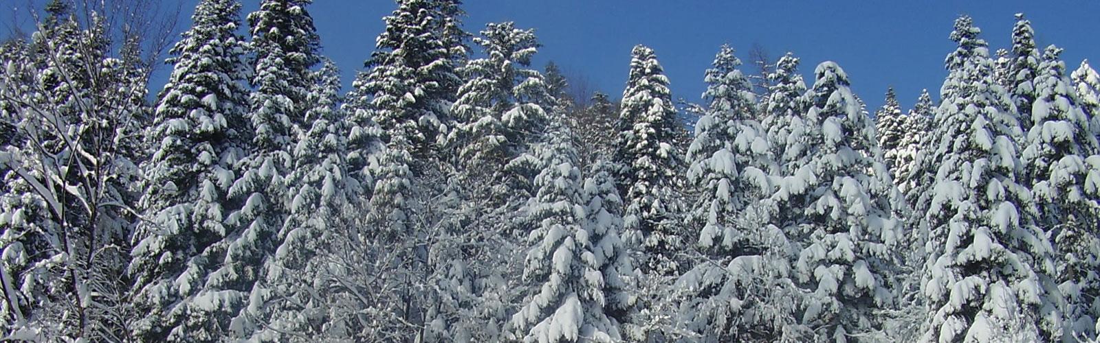 nacionalni-park-kozara-klima-3