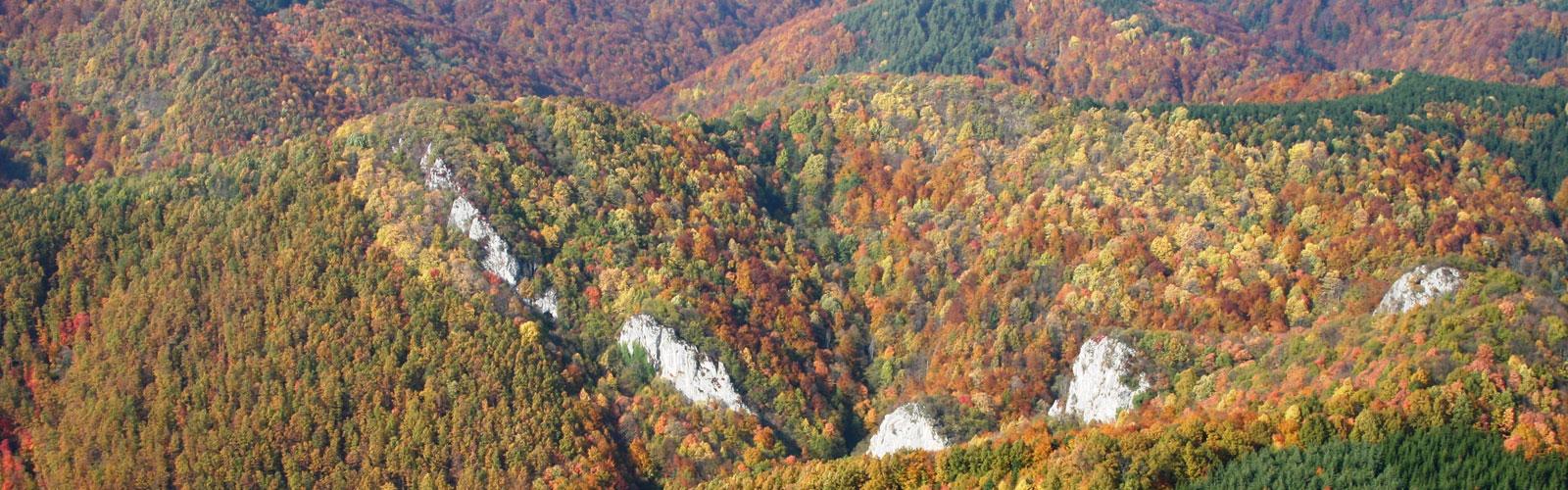 nacionalni-park-kozara-klima-1